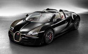 Picture Bugatti Veyron, W16, Black Bess