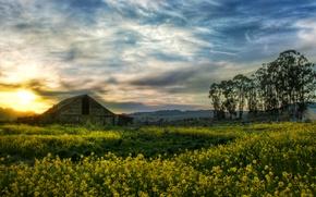 Picture the barn, USA, CA, farm, usa, barn, farm, сalifornia, petaluma, Petaluma