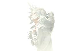 Picture white, bird, guy, art