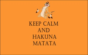 Picture life without worries, Timon, keep calm and hakuna matata