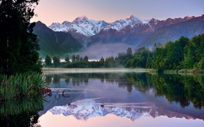 Picture forest, the sky, reflection, mountains, lake, duck, New Zealand