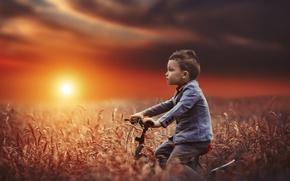 Wallpaper bike, mood, field, boy, sunset