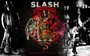 Picture guitarist, hard rock, Slash