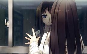 Picture look, girl, drops, reflection, rain, anime, window