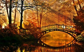 Picture Park, bridge, the rays of the sun, pond, trees, the bushes, autumn
