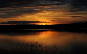 Picture forest, sunset, lake, twilight