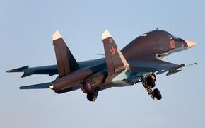 Picture bomber, Fullback, cу-34