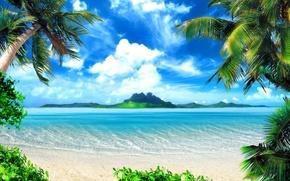 Picture beach, nature, tropics, palm trees