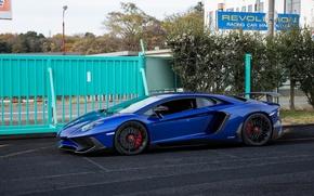 Picture Lamborghini, Blue, Aventador, Superveloce, LP-750
