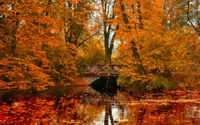 Wallpaper bridge, river, Park, reflection, autumn