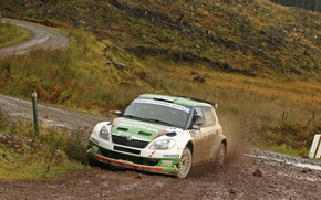 Picture Auto, Green, Dirt, the front, Rally, Rally, Skoda, Fabia, Fabia