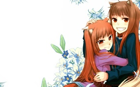 Picture anime, art, girl, spice and wolf, spice and wolf