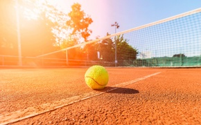 Picture field, summer, the sky, macro, landscape, mesh, stay, the ball, positive, blur, line, day, summer, …