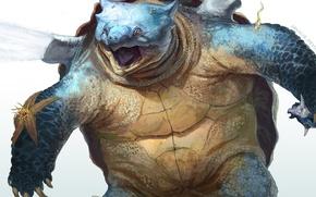 Picture turtle, sea, pokemon, shell, Blastoise