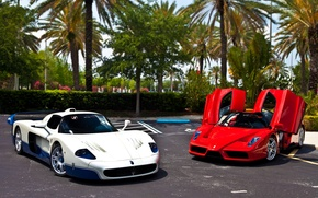 Picture white, red, palm trees, Parking, red, white, ferrari, Ferrari, enzo, Maserati, parking, Enzo, macerati, эмси12, …