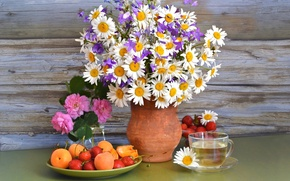 Picture summer, berries, tea, roses, chamomile, bouquet, strawberry, pitcher, bells, apricots