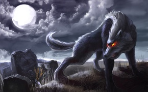 Picture night, the moon, web, Wolf, tombstones, burning eyes