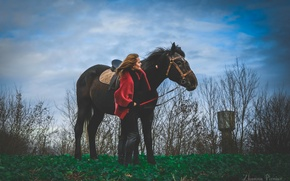 Picture field, girl, trees, Horse, art