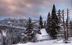 Picture Poland, Zakopane, winter