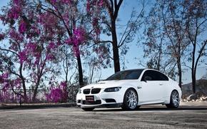 Picture white, the sky, tree, bmw, BMW, white, wheels, tree, e92, leaves purple