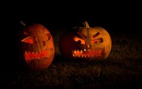 Picture grass, light, night, holiday, pumpkin, light, grass, halloween, night, holiday, 2560x1600, candle, candles, pumpkins