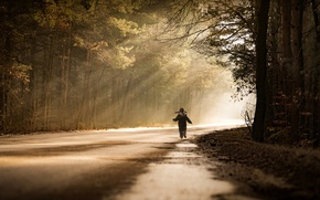 Picture road, light, boy