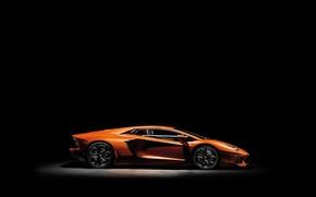 Picture light, machine, car, lamborghini, cars, LP700-4, aventador