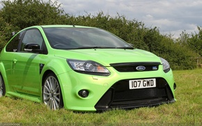 Picture green, Ford, grass, focus