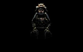 Picture shadow, samurai, costume