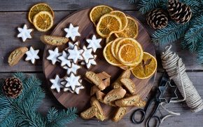 Picture branches, spruce, oranges, New Year, cookies, Christmas, stars, bumps, holidays, glaze, Christmas