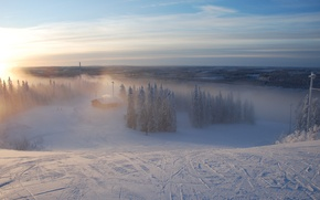 Wallpaper fog, forest, Winter, trails