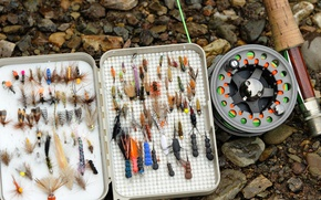 Picture box, fishing, coil, spinning, Kam, bait