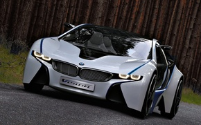Picture EfficientDynamics, Vision, BMW, the concept, the front, machine, Concept, BMW