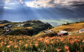 Picture flowers, rays, light, mountains, nature, trees, house, field, Taiwan, hills, the sky, valley, clouds