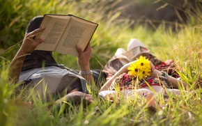 Picture greens, grass, girl, love, flowers, background, widescreen, Wallpaper, romance, mood, woman, feelings, meadow, pair, book, ...