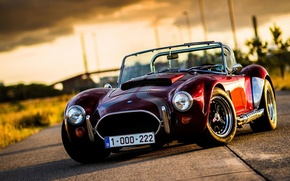 Picture car, red, ford, shelby, cobra