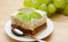 Picture kiwi, grapes, cake, cake, mint, dessert, cakes, cake, sweet, piece