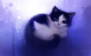 Picture cat, look, kitty, figure, artist, apofiss, wish, a ball