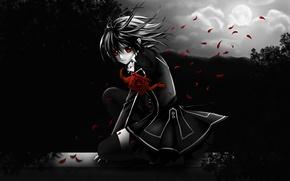 Picture look, girl, night, the moon, petals, headband, Vampire Knight