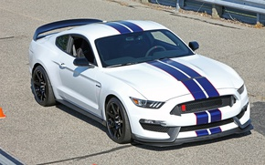 Picture Mustang, Ford, Shelby, GT350R, Raceway, Grattan, at