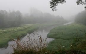 Wallpaper grass, fog, river