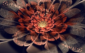 Wallpaper ART, PETALS, FLOWER, MESH, WEB, LIGHTS, ABSTRACTION, SPARKS