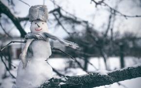 Picture winter, snow, snowman