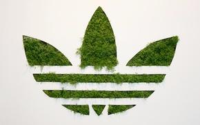 Picture Grass, Background, Adidas, Logo, Adidas, Originals