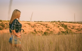 Picture Weed, Elegant, Blonde, Girl, Grass, Woman, Shorts, Girl, The evening, Summer, Pose, Evening, Wallpaper, Field, …