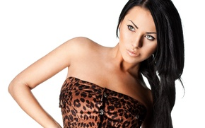 Picture look, girl, hair, makeup, dress, white background, black, leopard