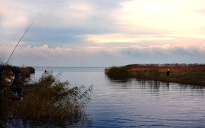 Picture sea, Bay, Baltika