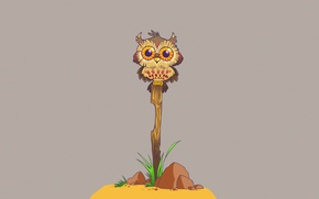 Picture grass, stones, owl, bird, minimalism, branch, stick, owl
