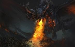 Wallpaper creature, dragon, darkness, fire, Army
