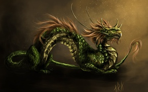 Picture mustache, dragon, art, mane, Asian